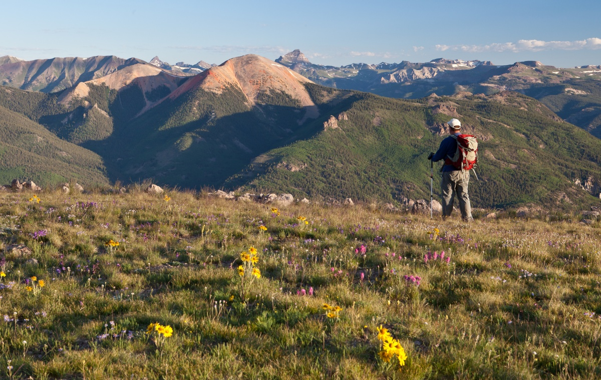 A hiker with a backpack and a walking stick stands at in a field with flowers overlooking the mountainous landscape ahead