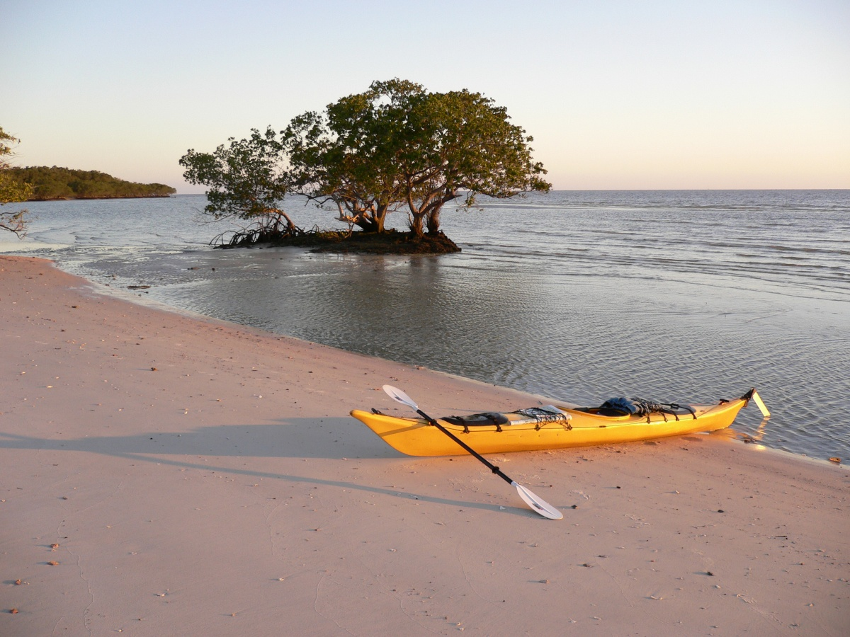 A kayak sits on the beach with a tree in the background