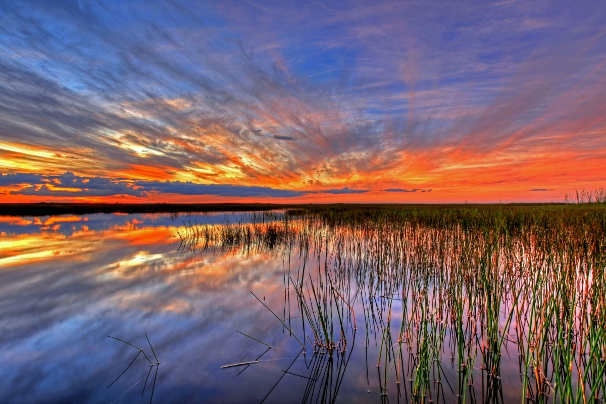 Orange and purple colors in the sky are reflected in the water with grass sticking out
