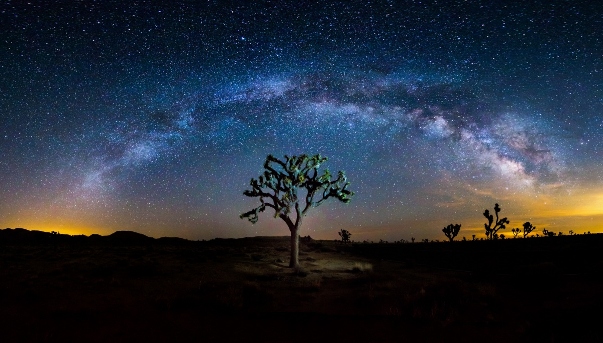 An arch of milky way formations extends from orange sky on both ends. The dark and starry night sky behind it allows a perfect framing of a single tree.