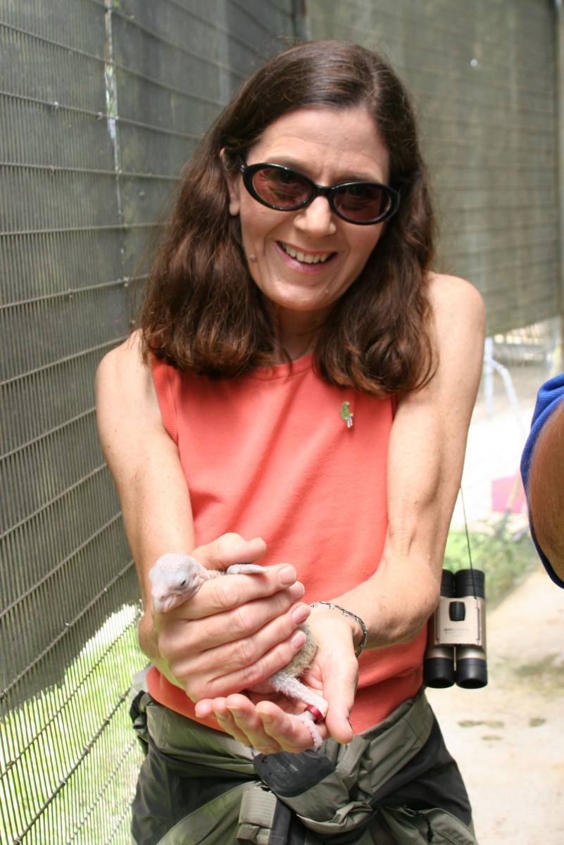 Lynn Scarlett -- a woman with brown hair wearing sunglasses holds a baby animal in her hand