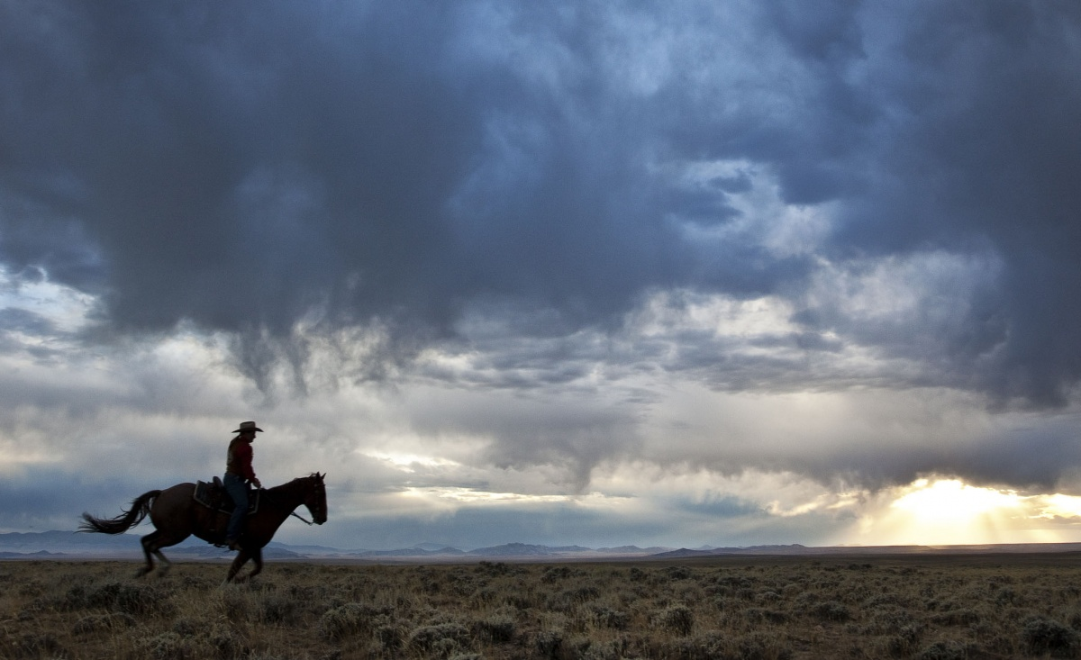 A man on a horse rides through shrub grass landscape with stormy, dark blue clouds overhead