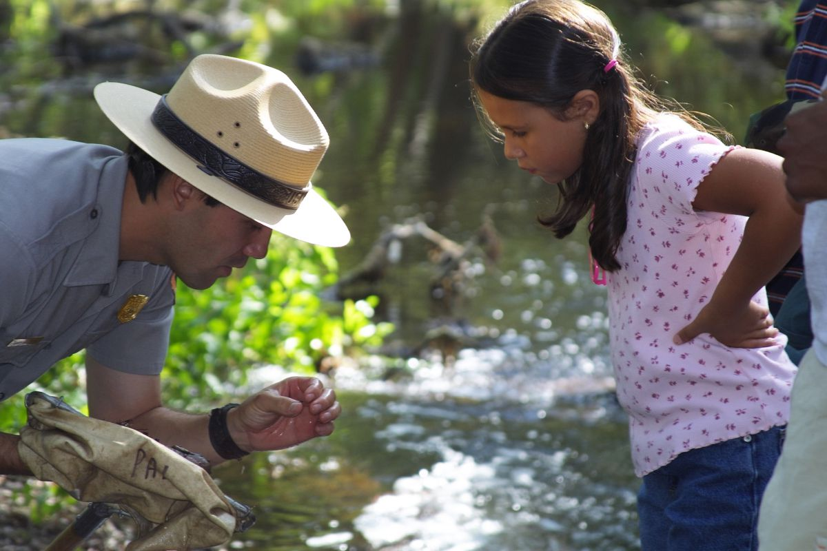 A park biologist shares his discovery of a mayfly in a creek to a young girl. Photo by National Park Service.