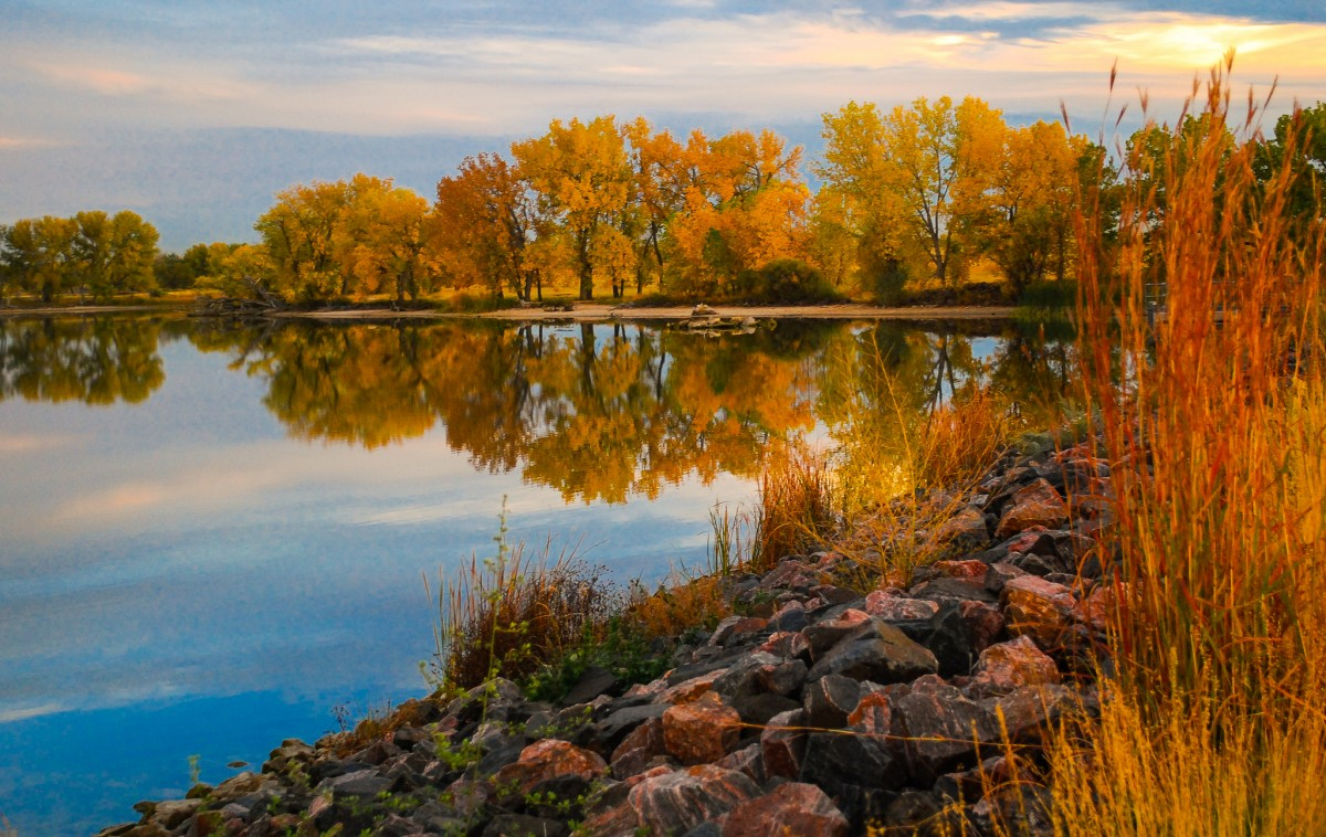 Trees showing their autumn colors stand along the rocky bank of a still lake.
