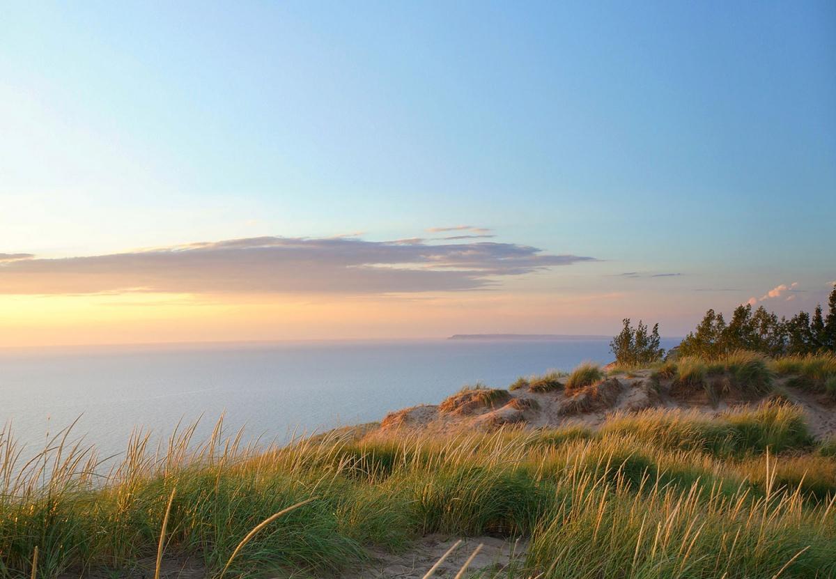 pastel sky, sandy beach, tall grass