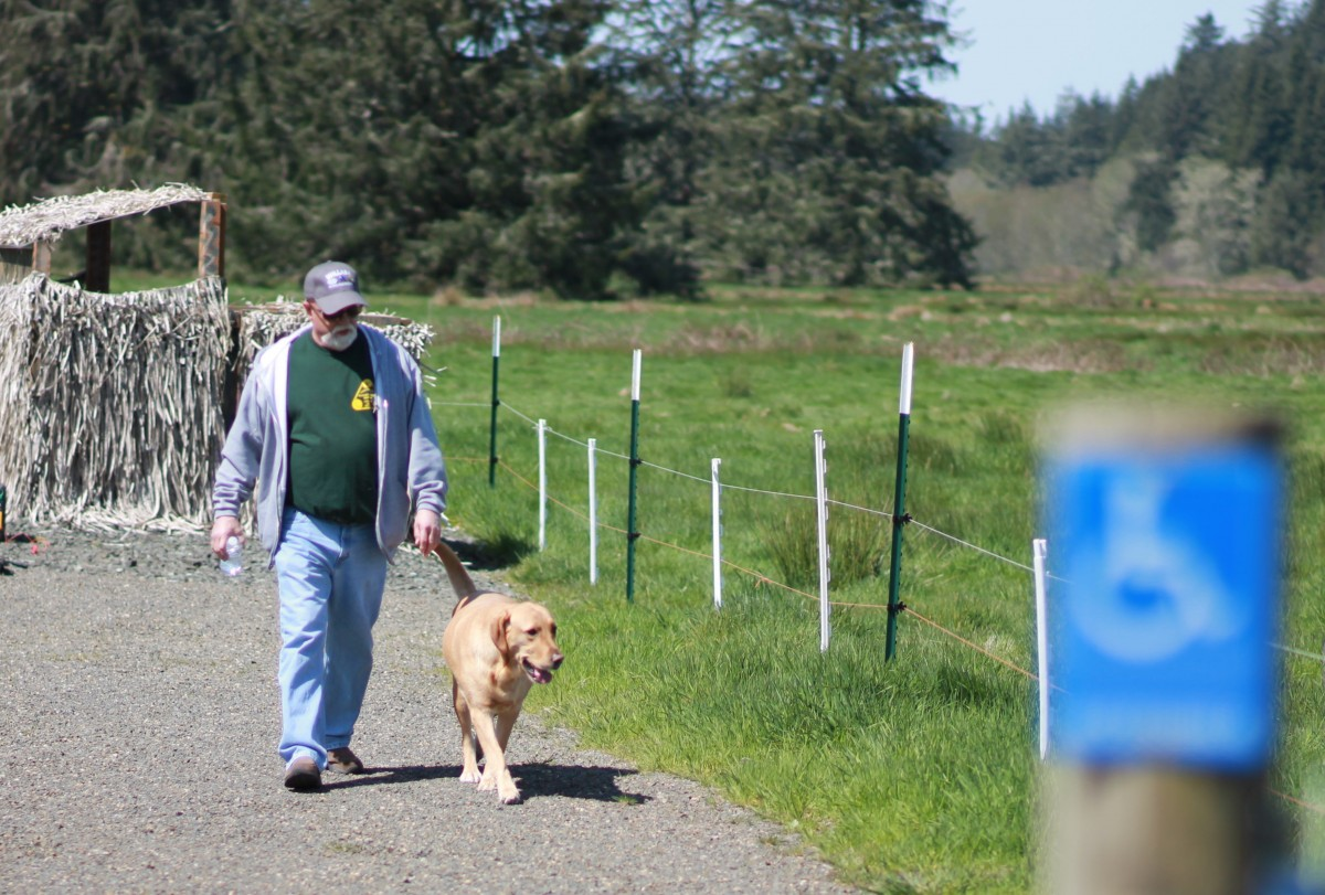 A man and his golden dog walk on a gravel path towards an accessibility sign unfocused in the foreground next to a green pasture with tall forest trees in the background.